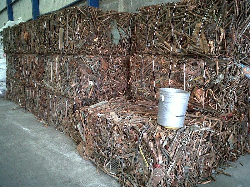Copper Scrap Birch/Cliff Berry Candy